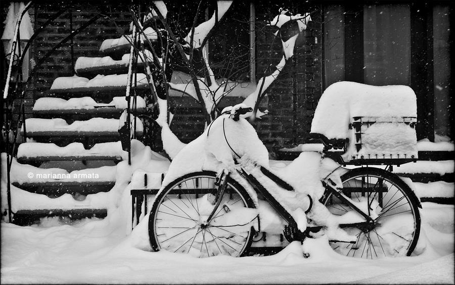 montreal winter