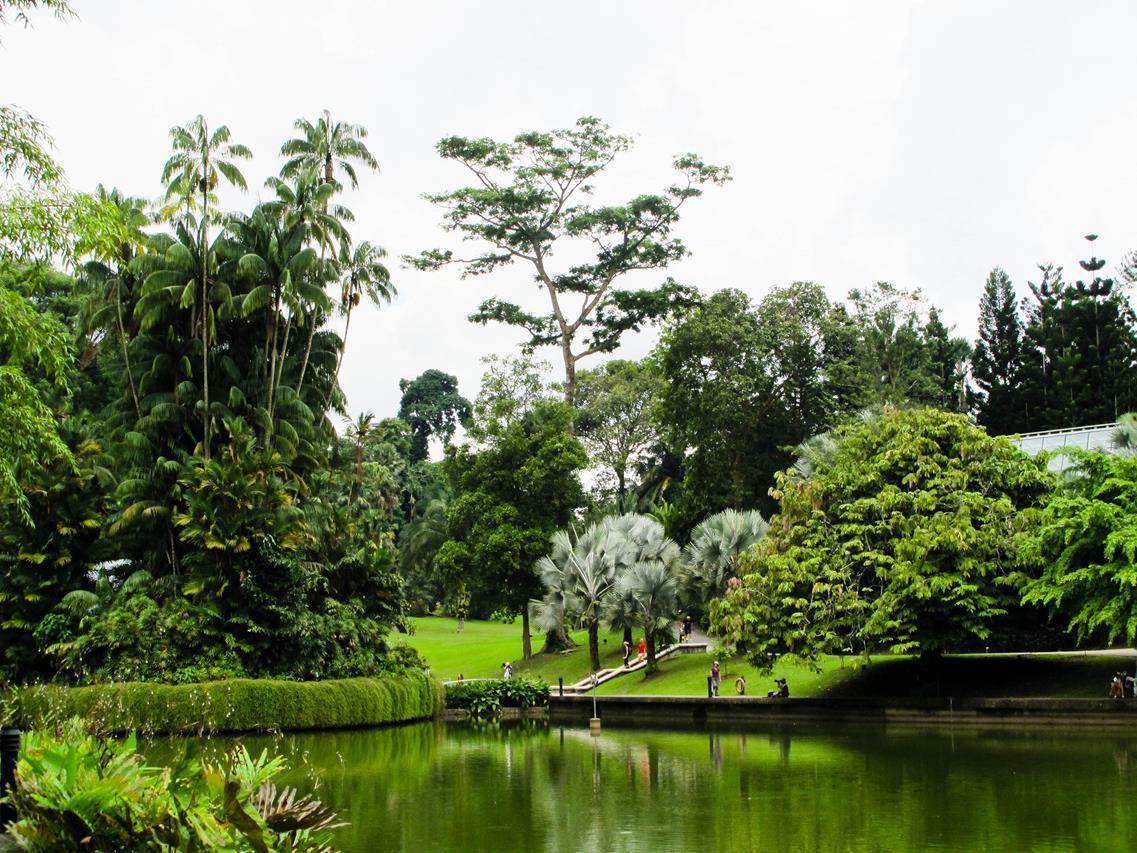 singapore-botanical-gardens