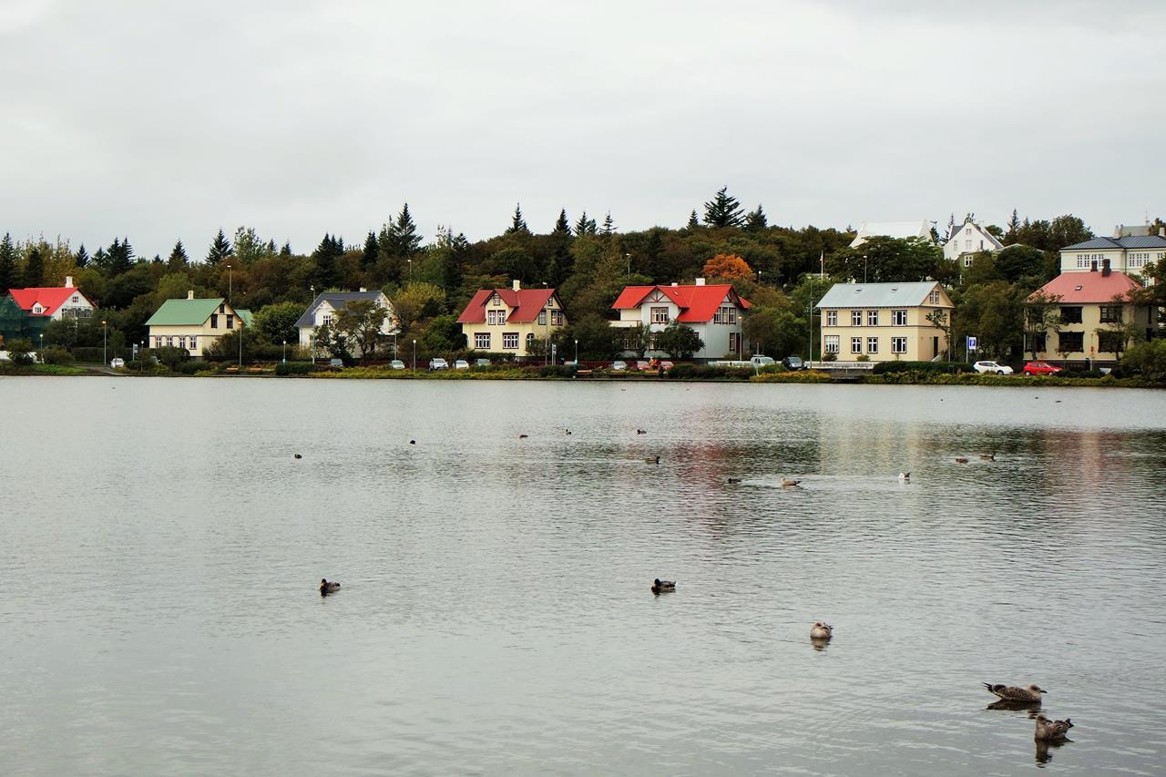 İzlanda Reykjavik