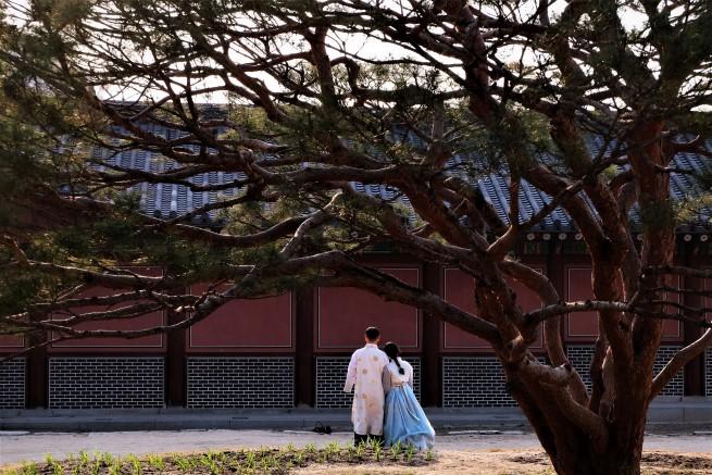 Güney Kore gezisi 1
