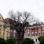 Lviv Ukrayna (8)