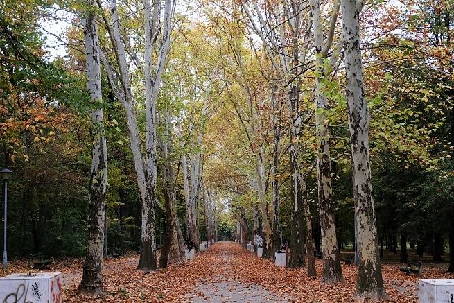 Hyde Park Belgrad