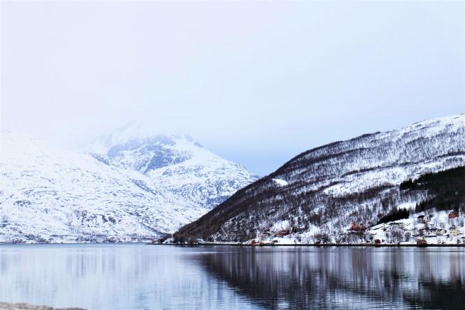 Tromso Gezi Rehberi (12)