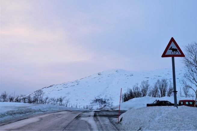 Tromso Gezi Rehberi (19)