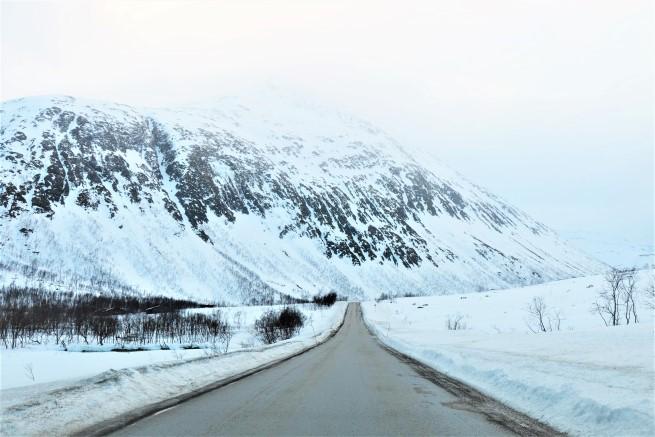 Tromso Gezi Rehberi (20)