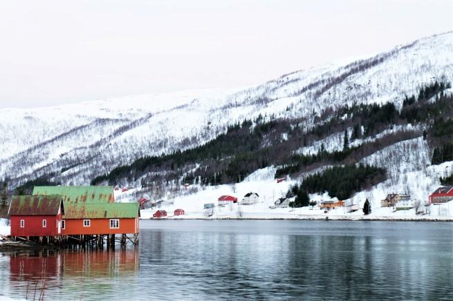 Tromso Gezi Rehberi (22)
