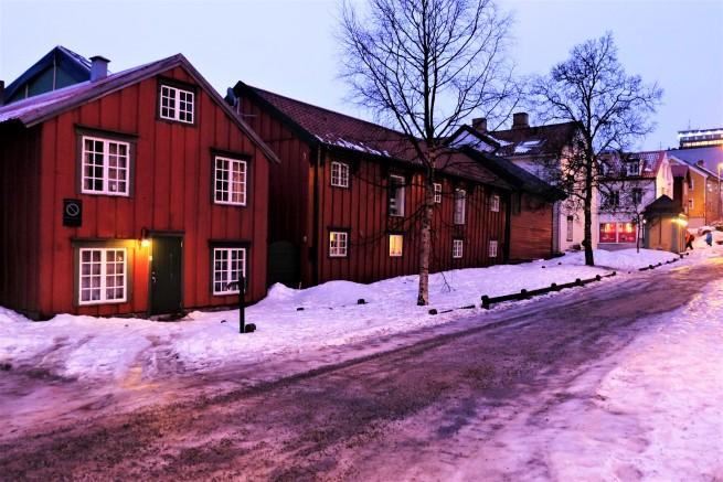 Tromso Gezi Rehberi (26)