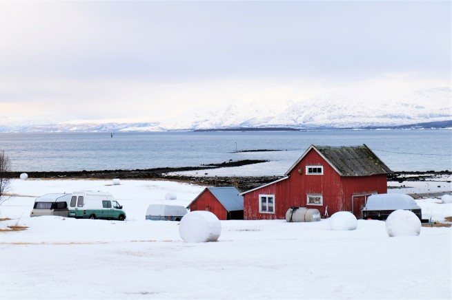 Tromso Gezi Rehberi (7)