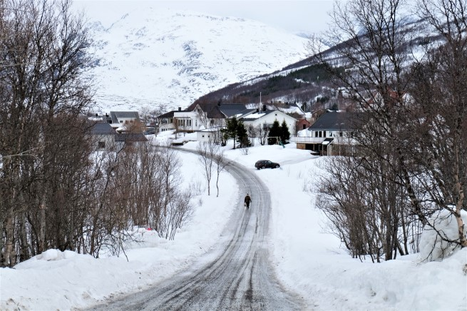 Tromso Gezi Rehberi (8)