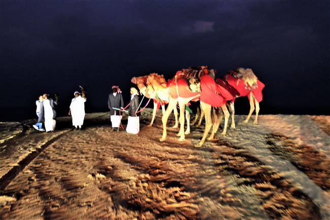 Katar Çöl Safarisi