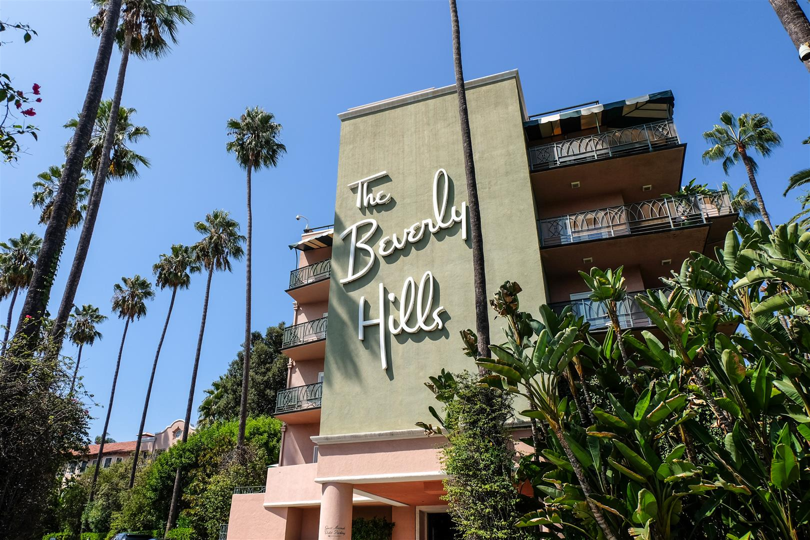 Beverly Hills Los Angeles (5)