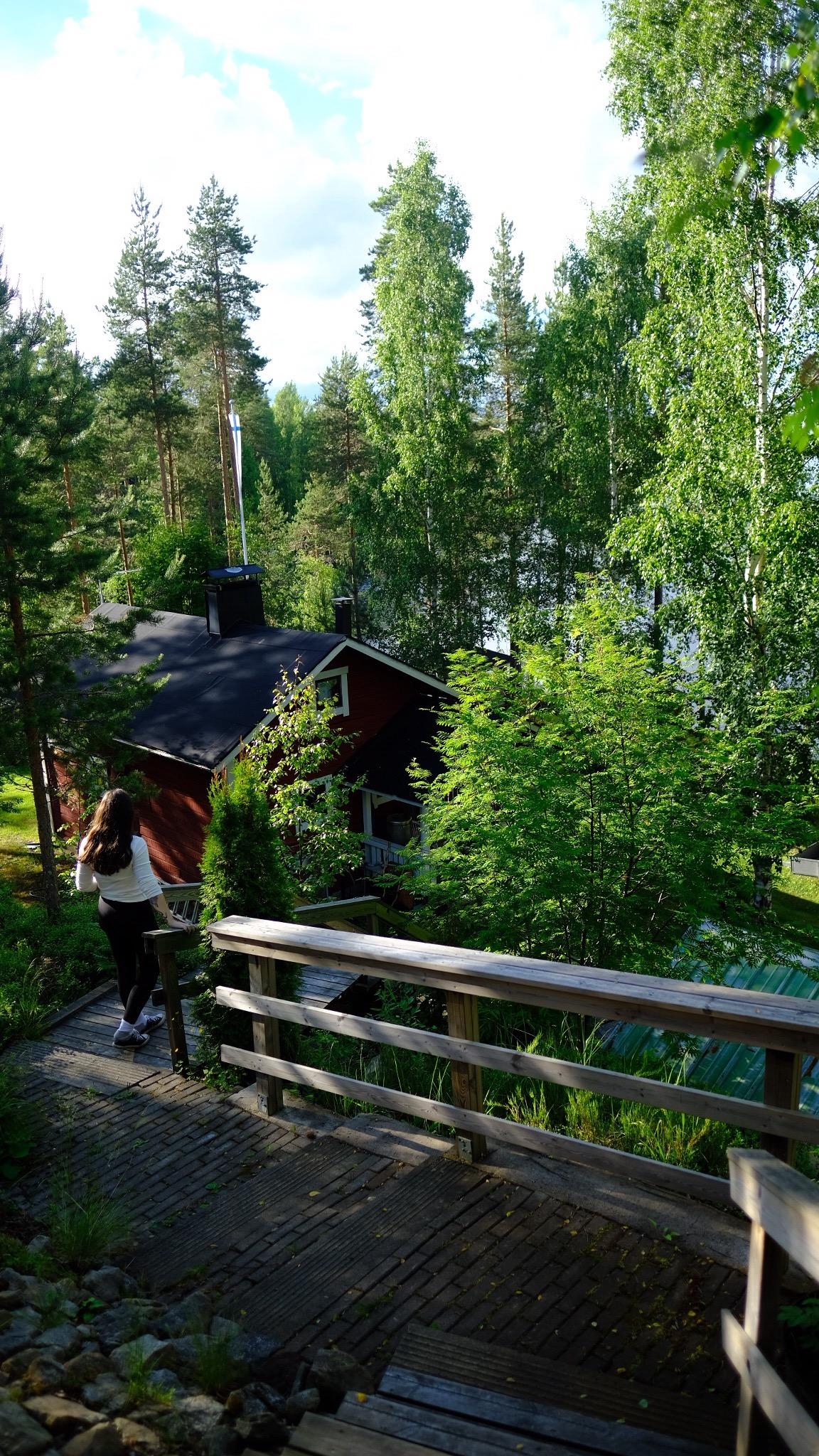 Finlandiya (14)